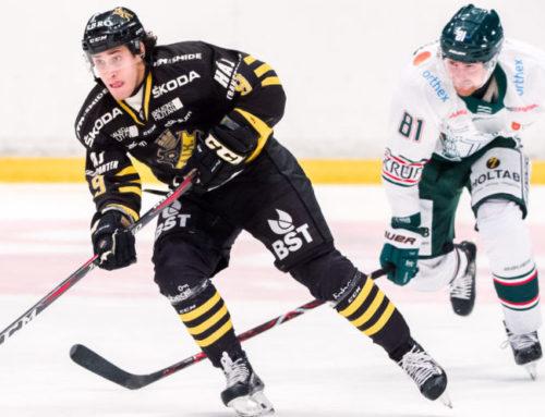 Doldis blir ny huvudtränare i AIK